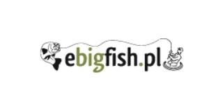 ebigfish logo